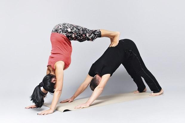 какой эффект дает парная йога