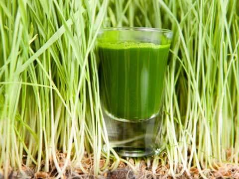 смузи из зелени