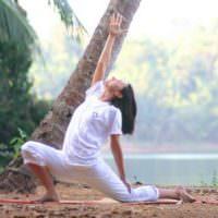 шивананда йога особенности