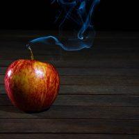 Вегетарианство и ВОЗ: Всемирная Организация Здравоохранения за вегетарианство?