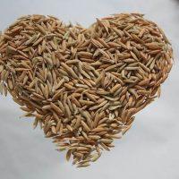 Рис. Где взять белки