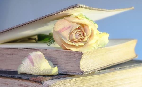 Книги о веганстве